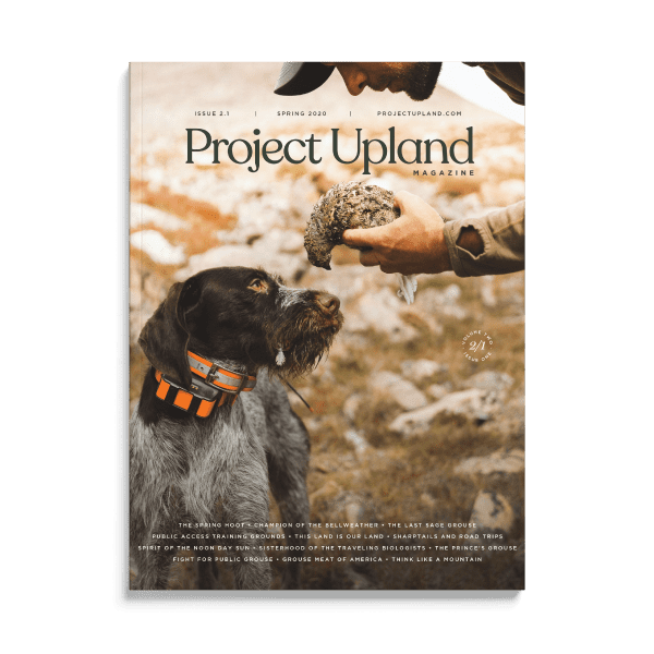 Spring 2020 Cover of Project Upland Magzine