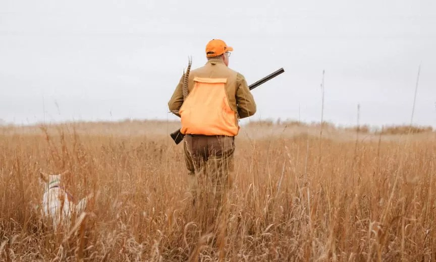 Wild game Chef Hank Shaw hunting pheasant in Kansas.