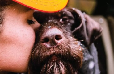 A bird hunter kisses their bird dog.