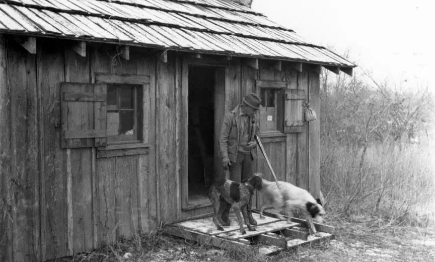 Aldo Leopold with his bird dogs
