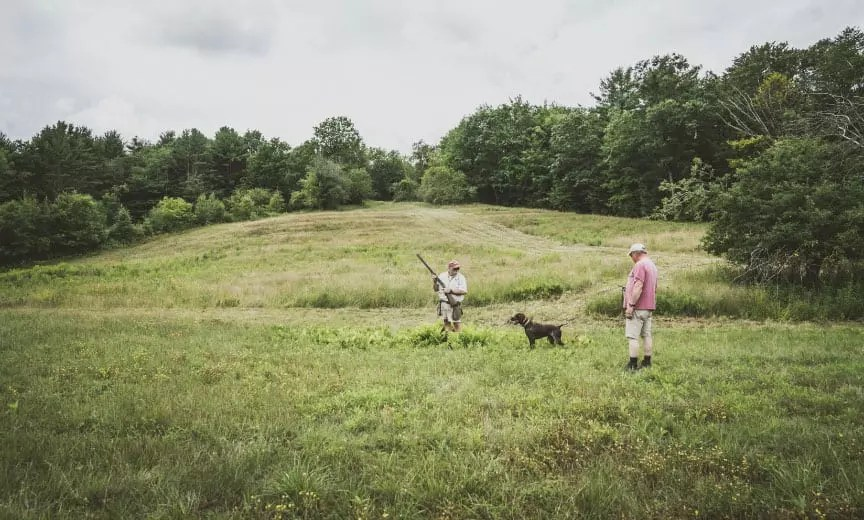 Dave Trahan President of NAVHDA training a bird dog.