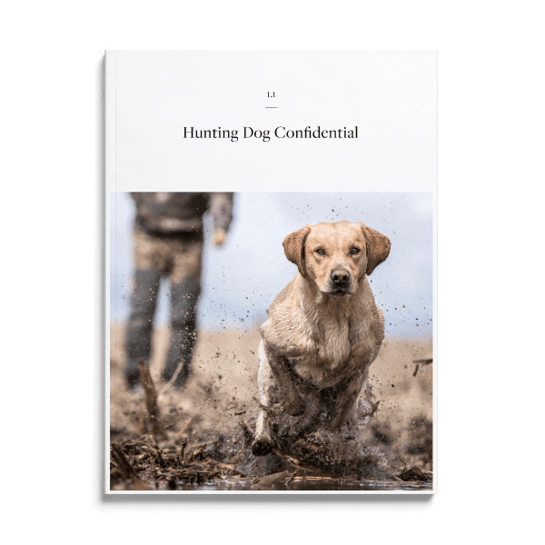 Front Cover of Issue 1.1 of Hunting Dog Confidential Magazine