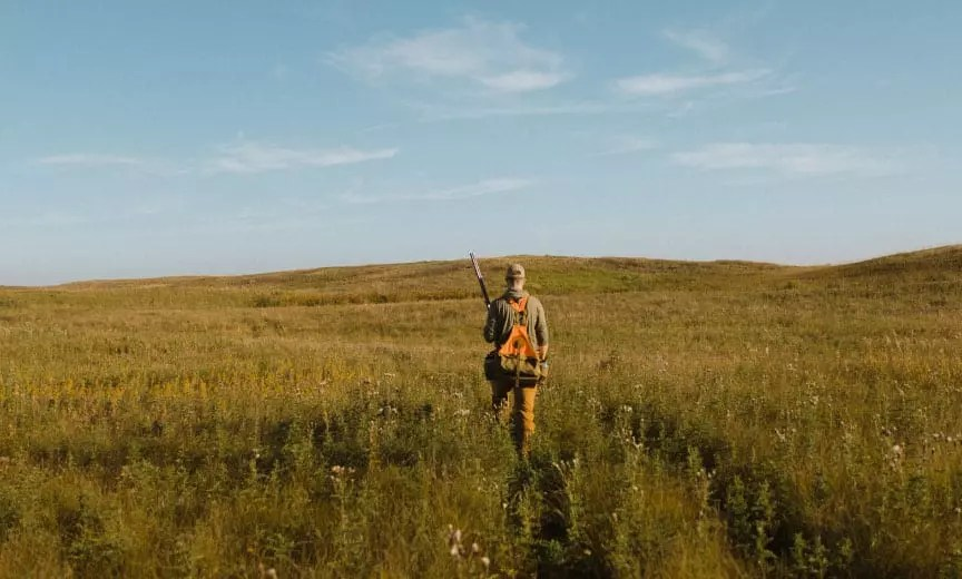 Grouse hunting on a prairie