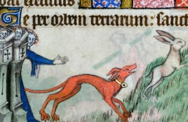 A medieval illustration of a sighthound coursing a hare