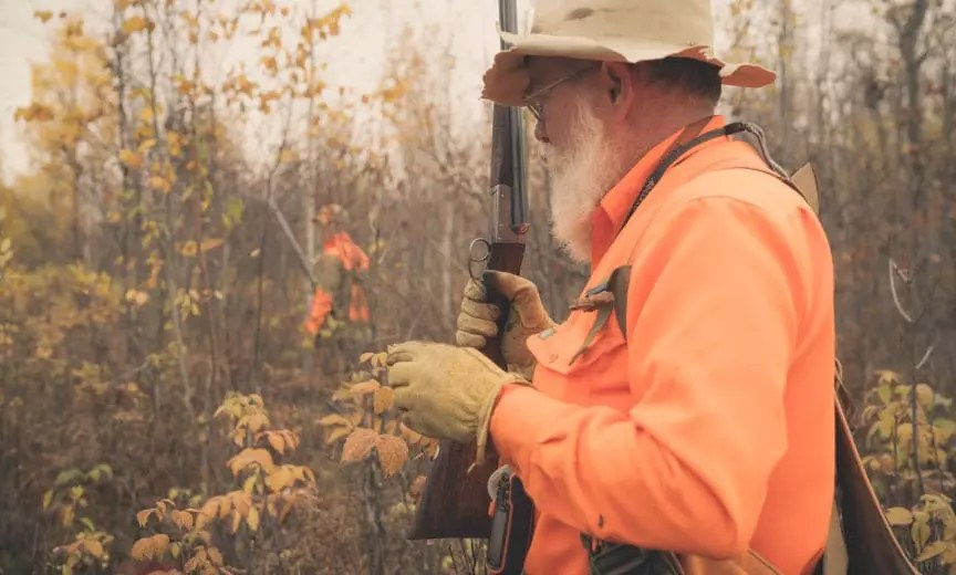 Hunting in woodcock habitat