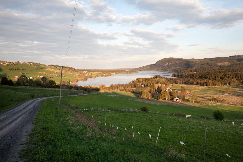 En grusväg med utsikt mot en sjö och en by