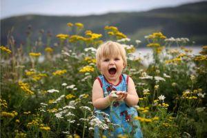 Ett barn plockar blommor på ängen i Övre Kaxås