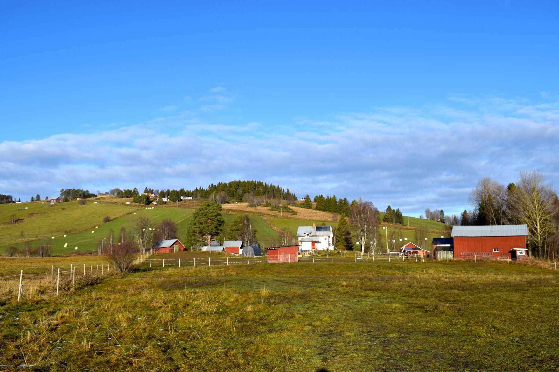 SÅLD! O'Larsgården i Åflo till salu – en dröm för djurintresserad barnfamilj.