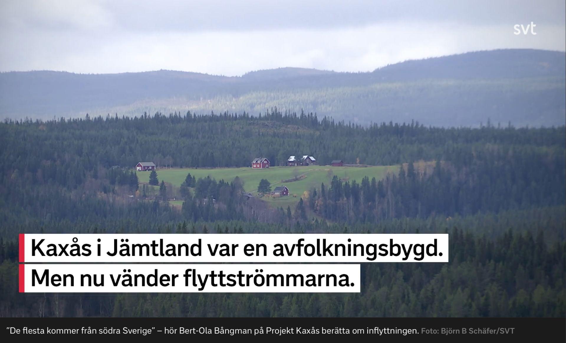 SVT Nyheter | Flyttströmmarna vänder i Kaxås. Foto © Björn Schäfer.