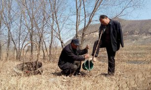blind-man-amputee-plant-trees-china-5 (1)