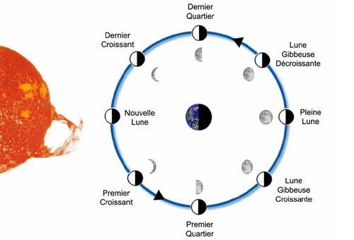 cycle de la lune astronomie