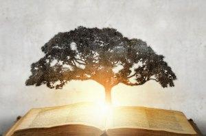Ecrire, développer sa conscience, enseigner… Pourquoi faire ?