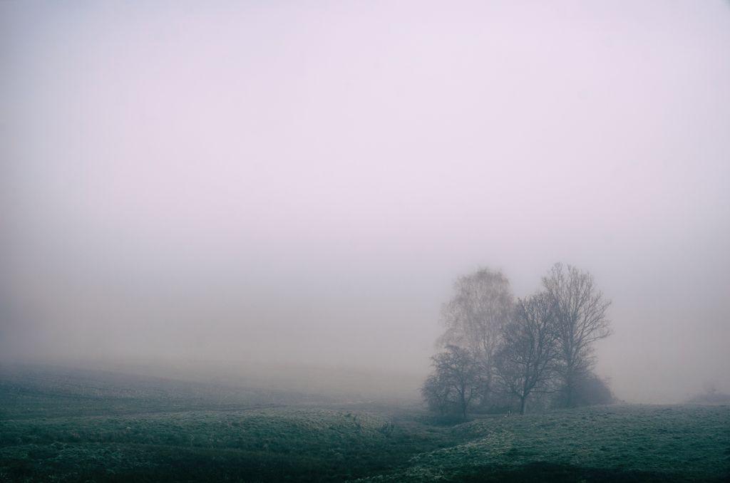 brouillard de la folie