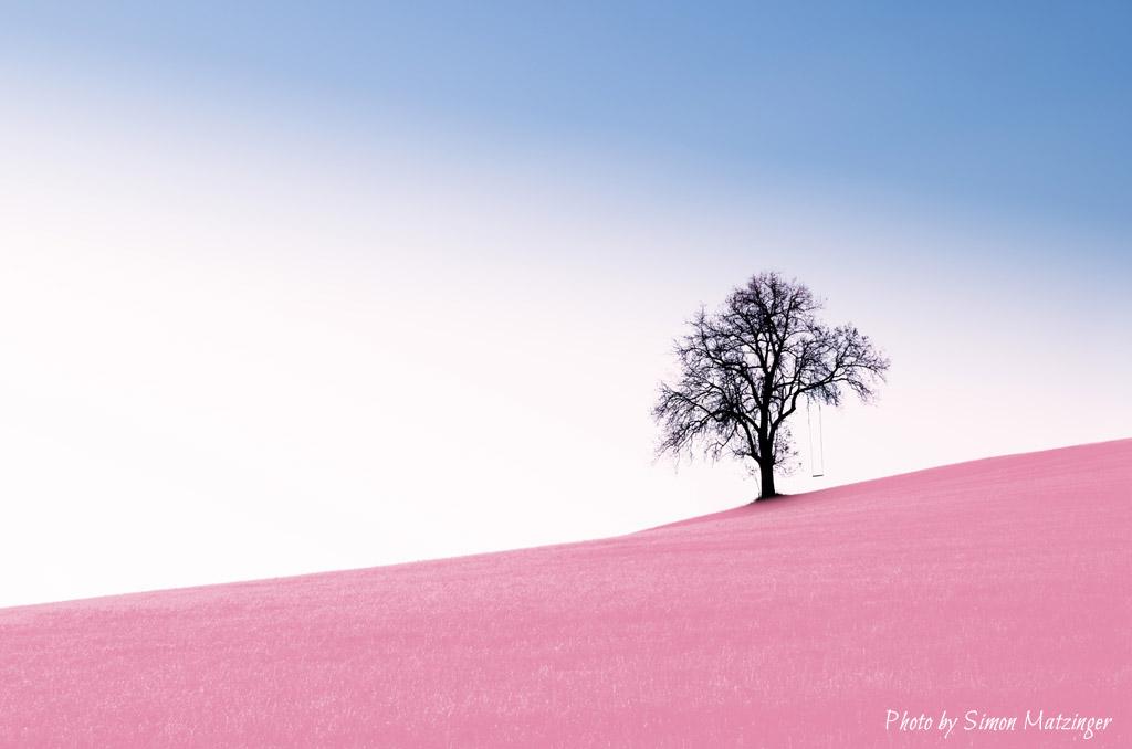 la-solitude-naturelle-zen