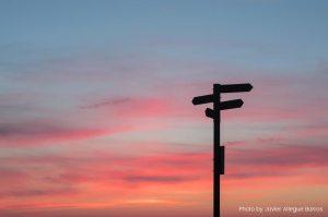 Une époque formidable, de Michael Bracewell : A nous de choisir
