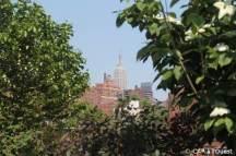 l'empire state building entre les arbres