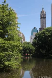 Vue sur les grattes ciel depuis Central Park