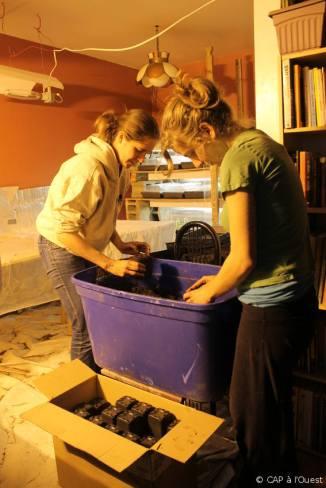 Clémentine et Caroline préparent les pots pour le repiquage