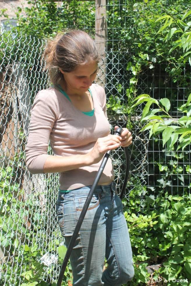 installation du système d'irrigation