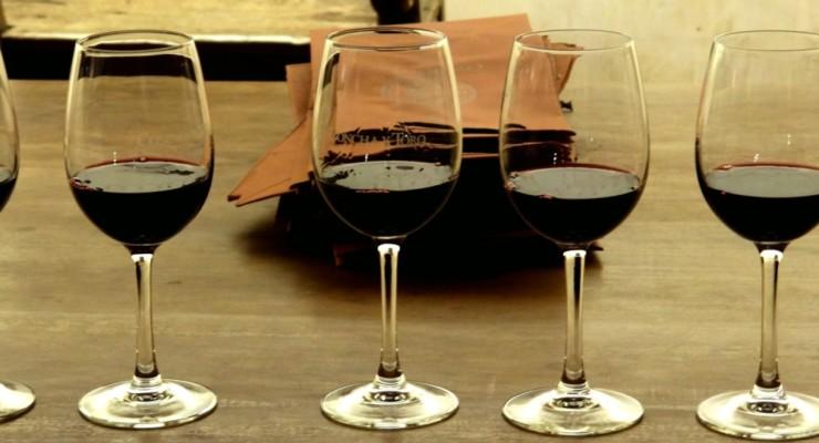 Chile: passeio pela vinícola Concha y Toro