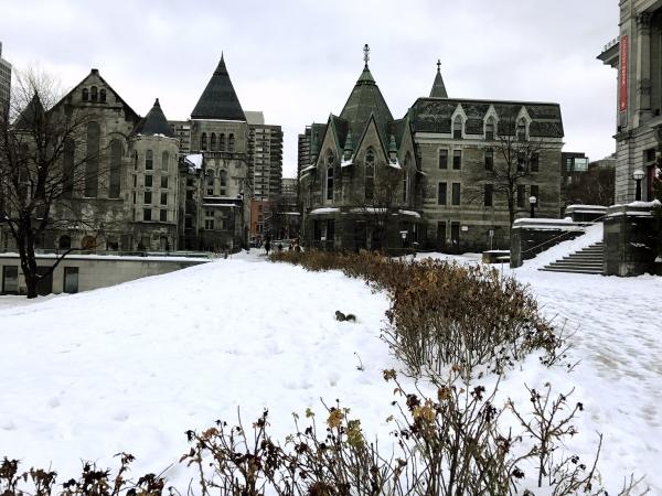 Predios da Universidade de Montreal