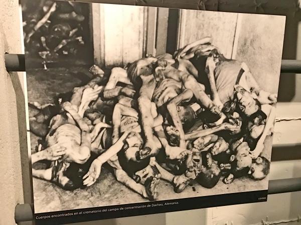Corpos no campo de concentração