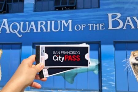 San Francisco CityPASS: o passe turístico que inclui transporte público