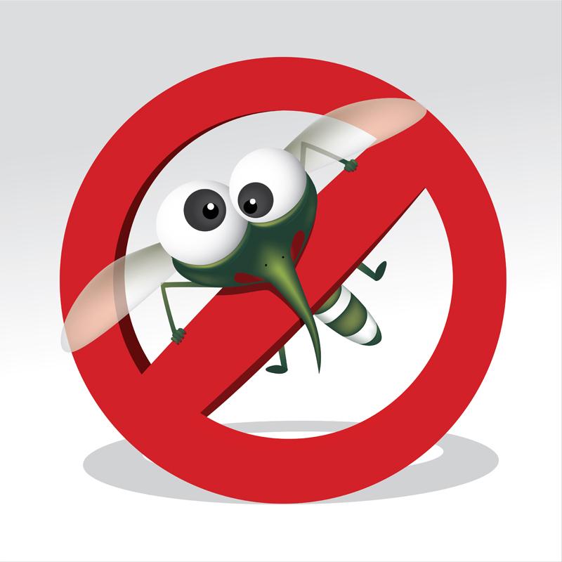 Resultado de imagem para proibido mosquito
