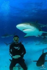 ViraVolta, Volta ao Mundo, Viagem pelo Mundo, Viagem Longo Prazo, instrutor de mergulho pelo mundo