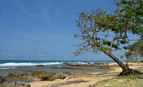 Pantai Karang Taraje, Bayah Lebak - Banten