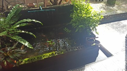 Little koi pond and mini water canal in front of it (there are a lot of these canals here since it rains so much).