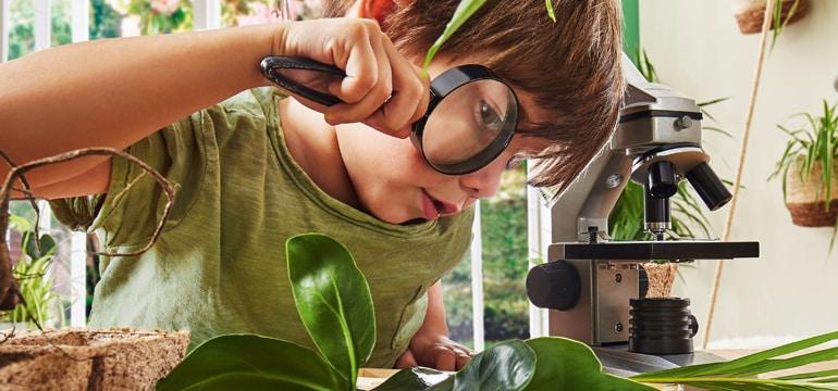 Renovieren mit Nachhaltigen Produkte