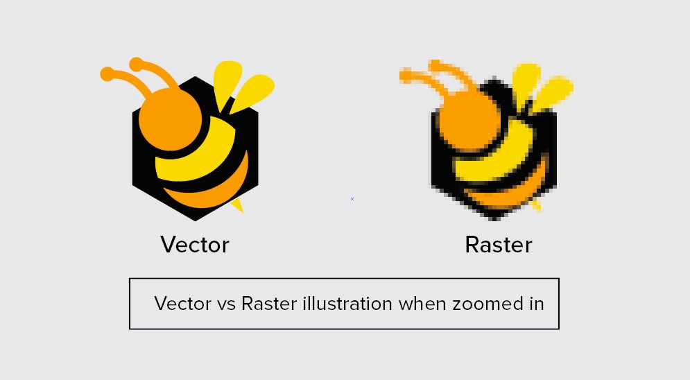 Raster-Vector-Bee2