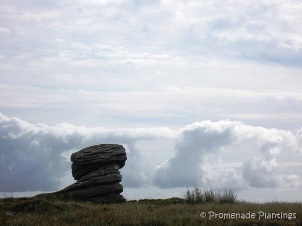 Devon Dartmoor