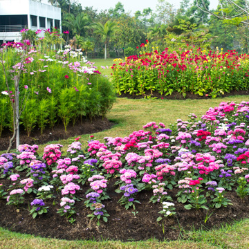 get garden ready for summer