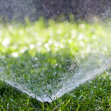 Everyone has their own ideas when it comes to lawn maintenance, and your ideas may vary greatly from your neighbor's. You may love the eye-catching, whimsical yard decorations, and your neighbor may not