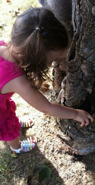 NaturePreschoolWoodbridge_454x605