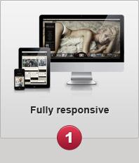 Fully responsive