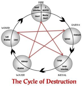 The Cycle of Destruction