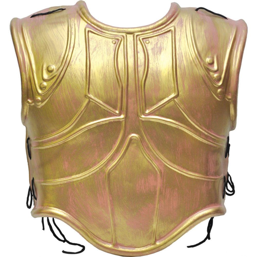 The Kyusho Jitsu Iron Shirt