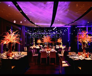 Wedding Reception WOW Factor
