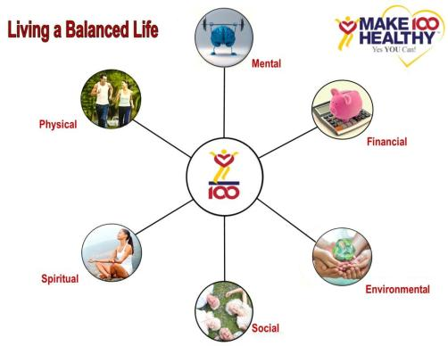 Make 100 Healthy Wheel of Life New