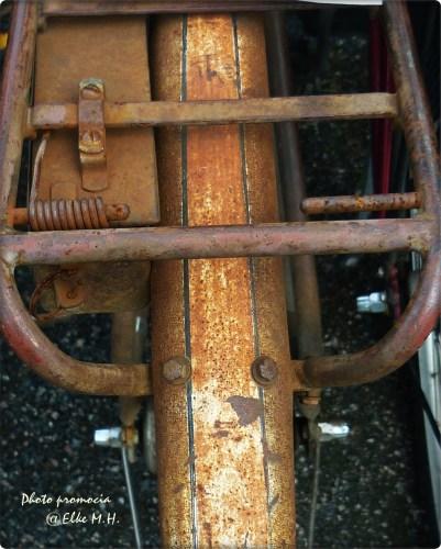 Rost 3 -Hinterradgepäckträger