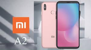 Trick to Buy Xiaomi Mi A2 & Mi A2 Lite From Flipkart Flash Sale Easily