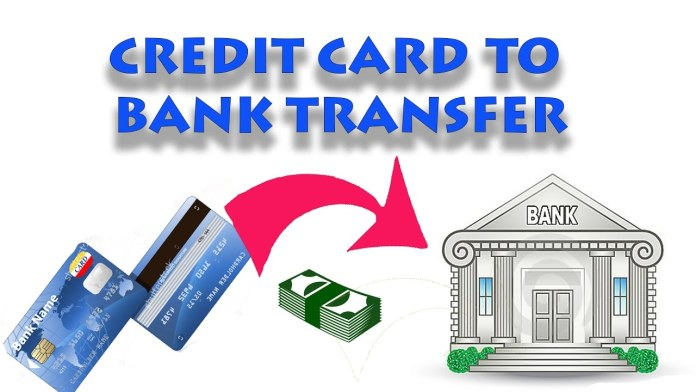 How to transfer the Credit card balance to Bank Account for Free