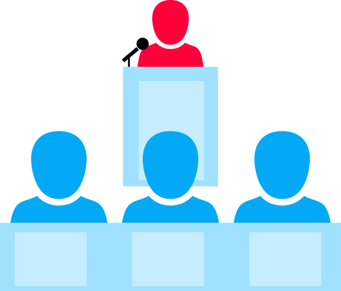Audience insights and segmentation
