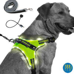 LED light up pet harnesses and leash combo.Keep your pets safe with LED light up pet harnesses and leashes. Perfcet for brand identity for pet stores and pet products. Customized logo or private label available.Promotional Product Direct