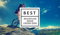 Best mountain bike under $300