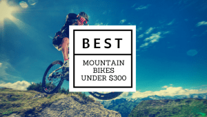 Best mountain bike under $300
