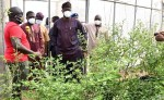 PHOTO: Gov Makinde Inspects Akufo Farm Settlement